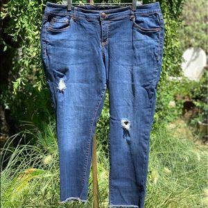 TORRID Distressed Blue Jeans Stretch Plus 20